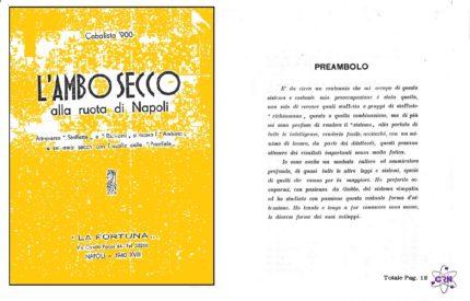 L'Ambo Secco alla ruota di Napoli Cabalista 900